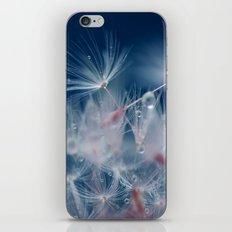 Snow Dandelion iPhone & iPod Skin