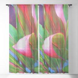 Nice Curves Sheer Curtain