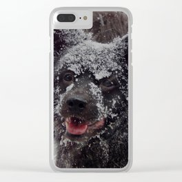 Snow dog! Clear iPhone Case