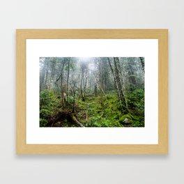 5000 ft. Framed Art Print