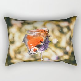 Beautiful european orange Peacock butterfly on mauve flower in autumn Rectangular Pillow