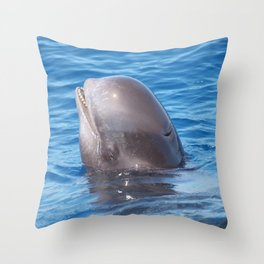 Cute wild pilot whale baby Throw Pillow