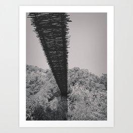 Monkey Sanctuary - Underside of bridge Art Print