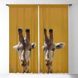 Giraffe Portrait Close up 2 Blackout Curtain