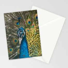 Paon coloré Stationery Cards