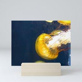 Jellyfish Sea Nettle Artwork Photography Mini Art Print