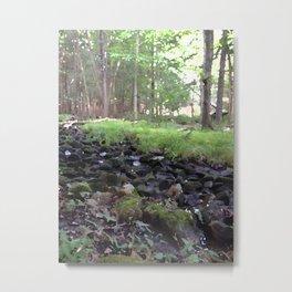 Harriman Creek Metal Print