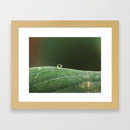 in a drop Framed Art Print