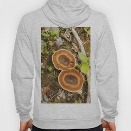 Nature in the Spring Hoody
