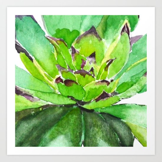 green succulent 3 Art Print
