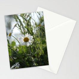 Irish daisy Stationery Cards