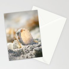 A Shell Stationery Cards