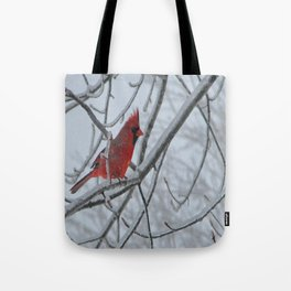Redbird on Icy Tree Branch Tote Bag