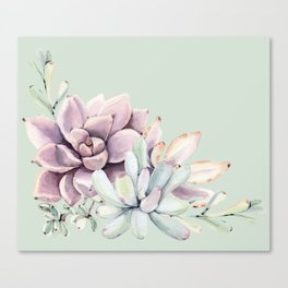 Beautiful Mint Succulents Canvas Print