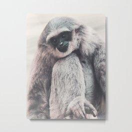 Silvery Gibbon Metal Print