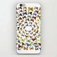 butterflies iPhone & iPod Skins featuring Butterflies by Ben Giles