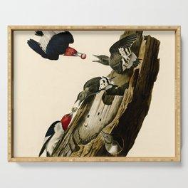 Red Headed Woodpecker Serving Tray