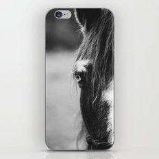 Blue Eye - horse photography iPhone Skin