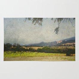 Fields of Solvang Rug