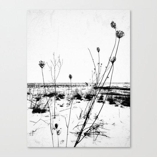 | the desolation flowers | Canvas Print