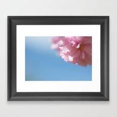 Japanese Spring - Prunus serrulata 2 648 Framed Art Print