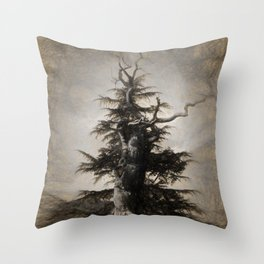 The new and the old in sepia Throw Pillow