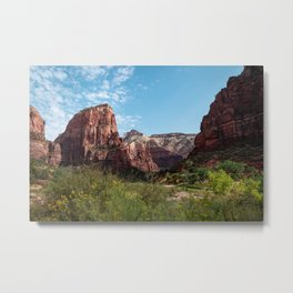 Navajo Sandstone - Zion National Park Metal Print