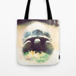 Acinixys Planicauda  Tote Bag