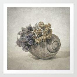 Seashell No.2 Art Print