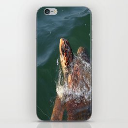 Loggerhead Turtle (Caretta Caretta) Breaking The Sea Surface iPhone Skin