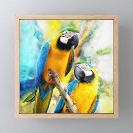 Macaw friends Framed Mini Art Print