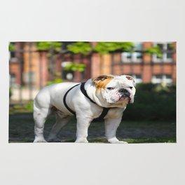 No Entry - Bulldog #decor #homedecor Rug