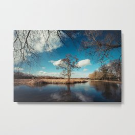 Stoke Meadows Metal Print