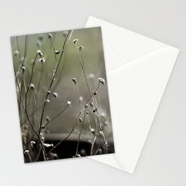 Wild Heather Stationery Cards