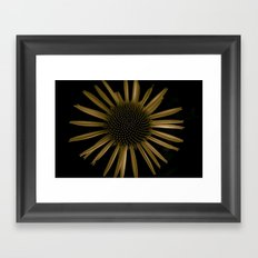 a flower in the dark number two  Framed Art Print
