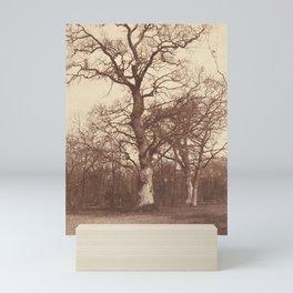 Olympe Aguado -  Study of Trees, Bois de Boulogne (1855) Mini Art Print