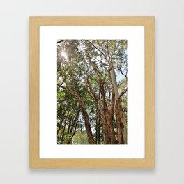Morphed Framed Art Print