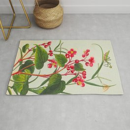 Joseph Buc'hoz -1776 Precious collection and illumination of t beautiful and curious flowers Rug