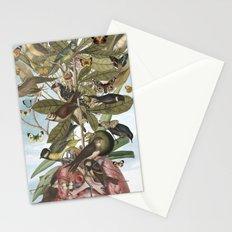 Tsatina Stationery Cards