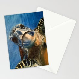Nosey Turtle Stationery Cards