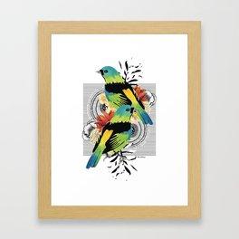 Green-headed Tanager Framed Art Print