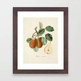 Kitchen, Vintage, Botanical, Art, Scandinavian, Wall art Print Framed Art Print