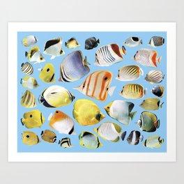 Butterflyfish_Skyblue base Art Print