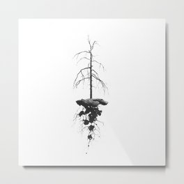 Nature in Space Metal Print