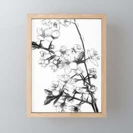 Cherry Blossoms Minimal Drawing Framed Mini Art Print