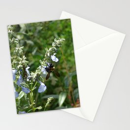 Bumblee on Prairie Blue Sage Salvia Azura Stationery Cards