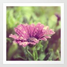 Flower series water drops! Art Print