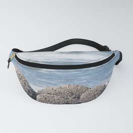 Tide Monitor Fanny Pack