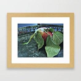 """Portrait"" of an Apple Framed Art Print"