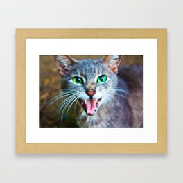 Meeoowww Framed Art Print